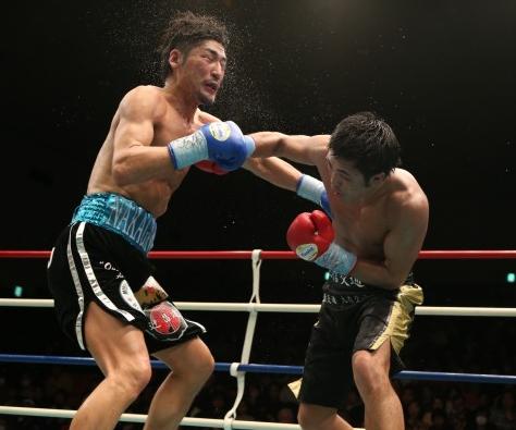 柴田がミドル級王座統一(ボクシングニュース)