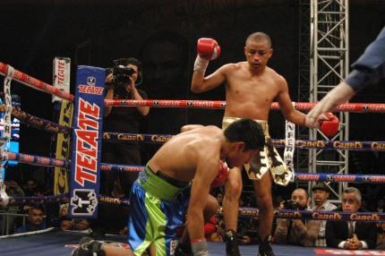 セグラが激闘制す、サルゲロに10回TKO勝ち(ボクシングニュース)